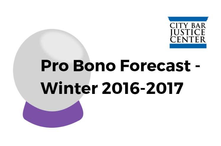 CBJC Pro Bono Forecast